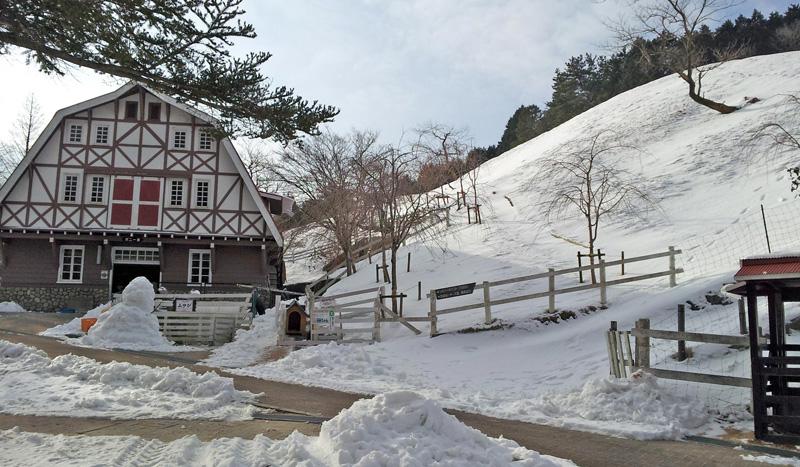 雪のポニー舎