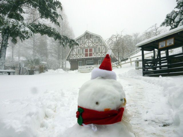 雪の中のポニー舎